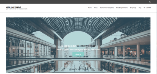 $49 eCommerce Website 1 Click Installation